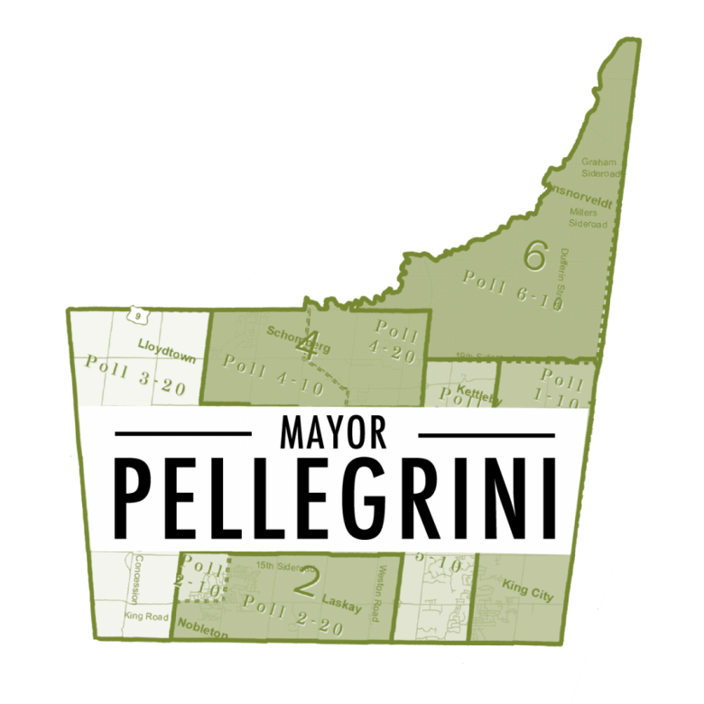 Mayor Steve Pellegrini