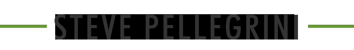 stevepellegrini.com